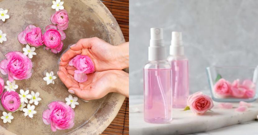 Agua de rosas para eliminar ojeras y otros beneficios