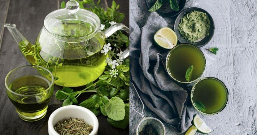 El té verde para qué sirve y beneficios del té verde