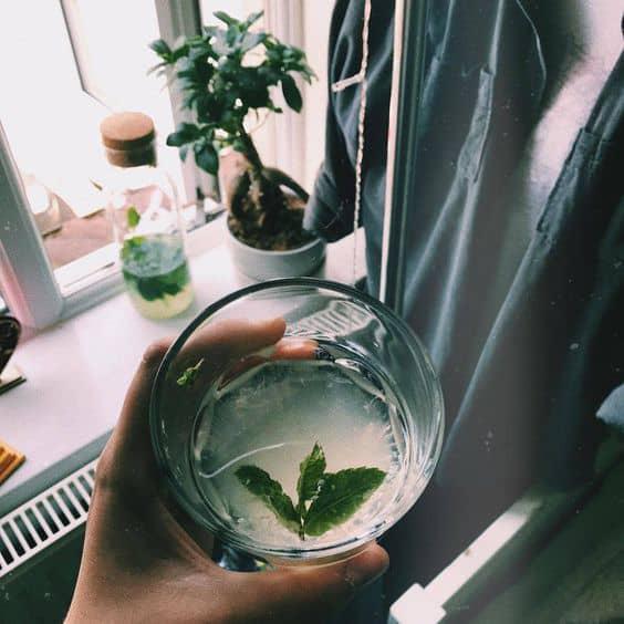 5 bebidas que te ayudarán a quemar grasa y subir tus defensas - Agua tibia con menta