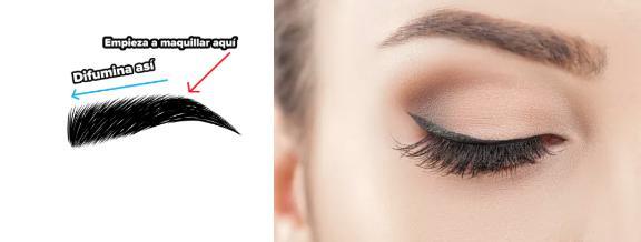 Errores que cometes al maquillar tus cejas y tips que luzcan perfecta - No las estás difuminando de manera correcta