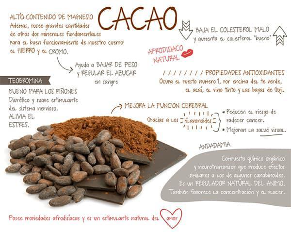 7 Superfoods que debes incorporar a tu dieta - Cacao