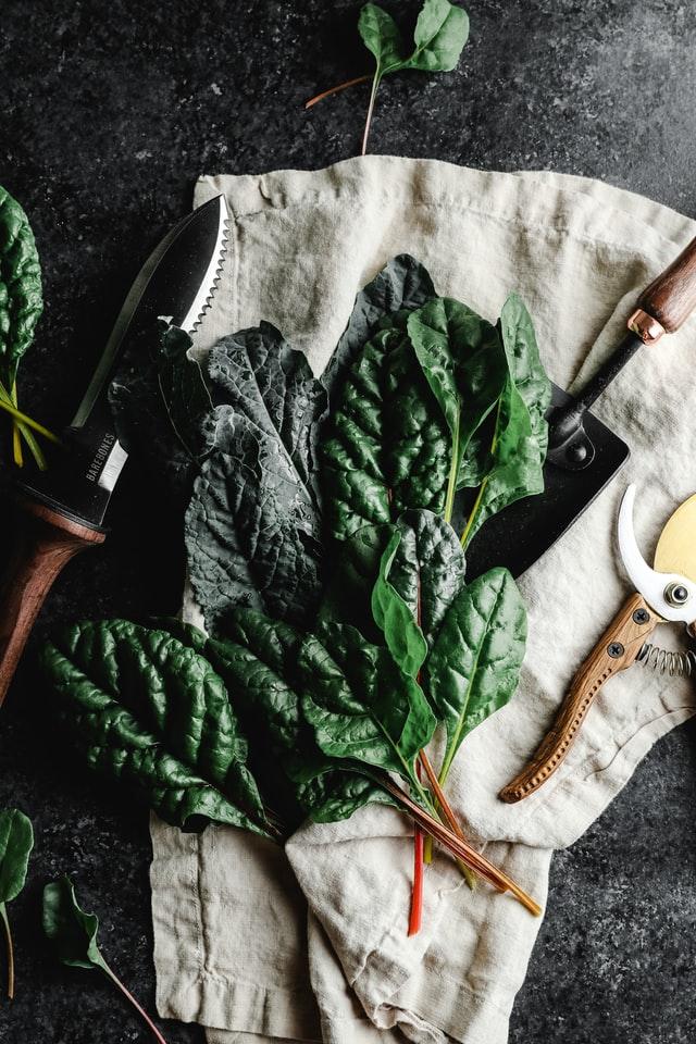 Alimentos que ayudan a calmar la ansiedad y el estrés - Espinaca