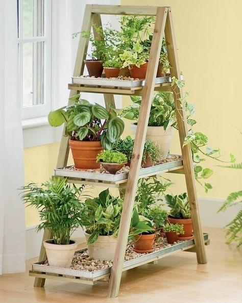 Ideas para decorar tu depa con tantas plantas como desees - Haz una repisa