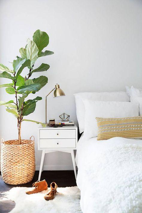 Ideas para decorar tu depa con tantas plantas como desees - No olvides decorar el baño