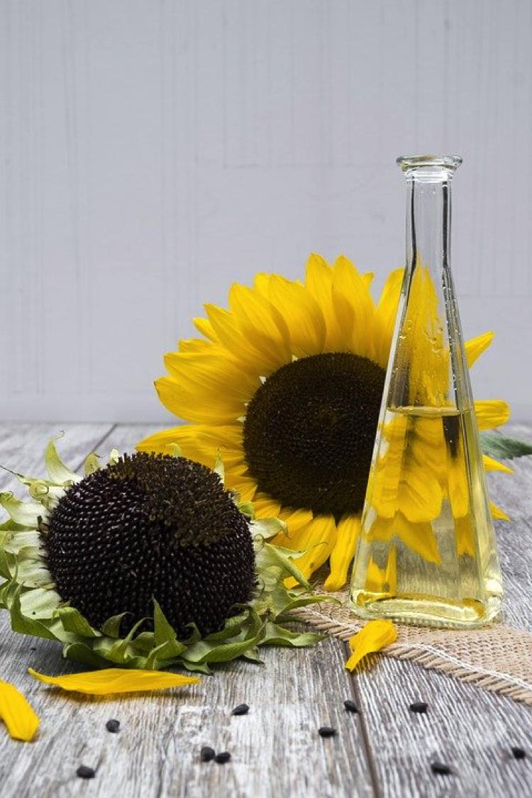 Aceites naturales para cuidar tu piel - El girasol no es solo una bella flor