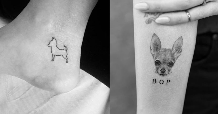 12 tatuajes de chihuahua que te enamoraran